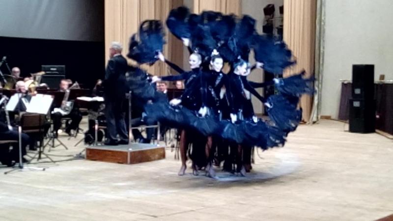 Танец чёрных лебедей