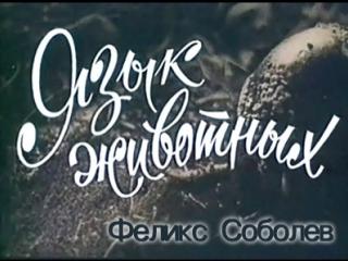 Язык животных (1967) реж. Феликс Соболев