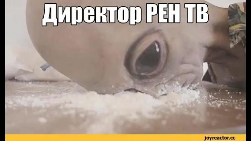 Директор Рен-Тв