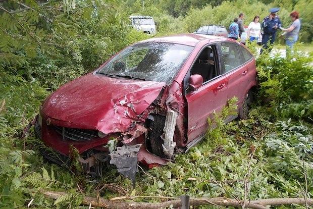Водитель уснул за рулем и врезался в дерево