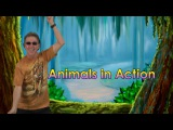 BRAIN BREAKS  Brain Breaks Song  Animals In Action 1  Jack Hartmann