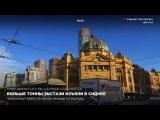 Больше тонны экстази изъяли в Сиднее