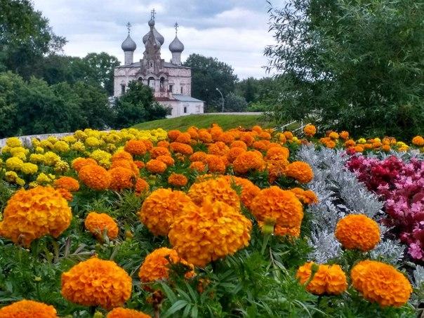 Церковь Иоанна Златоуста  Фото: Наталия Журавлева
