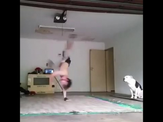 South africa style clean bboy powermoves with a pitbull