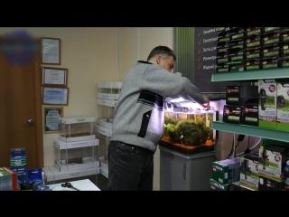 CO2 для аквариума. Часть 2