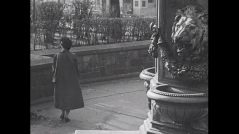 Joseph Cornell - The Aviary (made with Rudy Burkhardt) (1955)