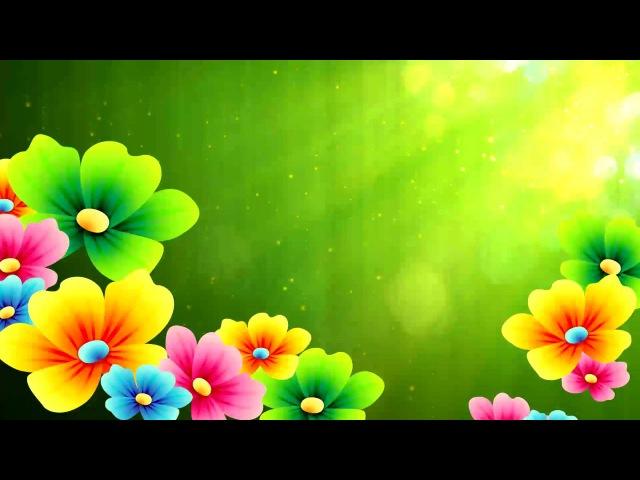 Футаж цветы и солнце для видеомонтажа скачать