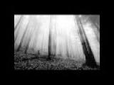 Depressive  Atmospheric Black Metal 1