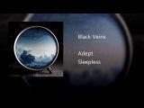 Adept - Black Veins