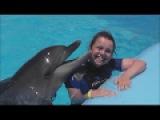 Плавание с дельфинами. #ДельфинарийDolphin World #Египет. #Макади Бей.  Nadar con delfines
