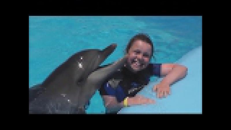 Плавание с дельфинами. Дельфинарий«Dolphin World» Египет. Макади Бей. Nadar con delfines