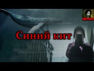Истории на ночь: Синий кит. Смертельная переписка Вконтакте. Жуткая смертельная ...