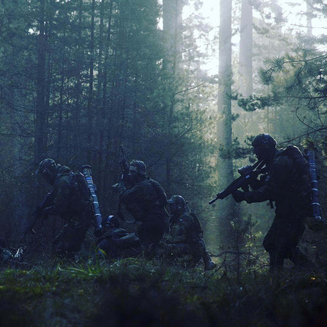 Európai szárazföldi erők RGWXOci5M6I