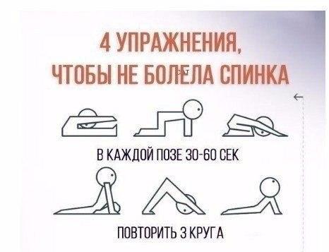 https://pp.userapi.com/c637617/v637617721/4d152/zeOkBQtiIwU.jpg
