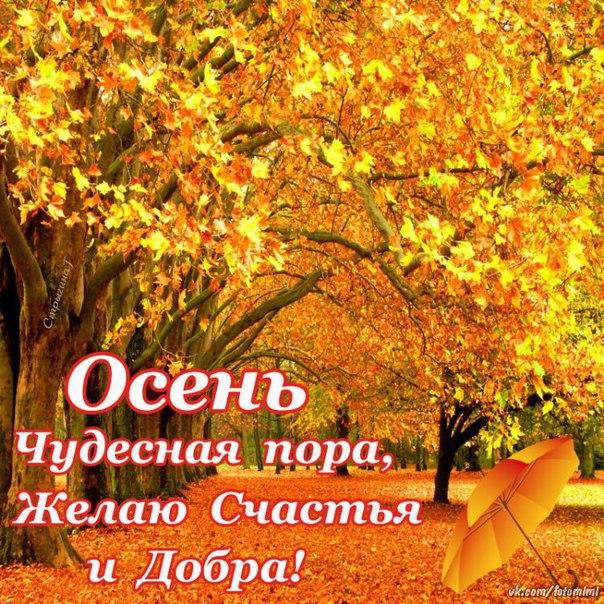 ОСЕНЬ чудесная пора,Желаю Счастья и Добра!