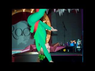 Дьяченко Александра - New Year 2017 (Aerial Silks) Школа танцев Алмея