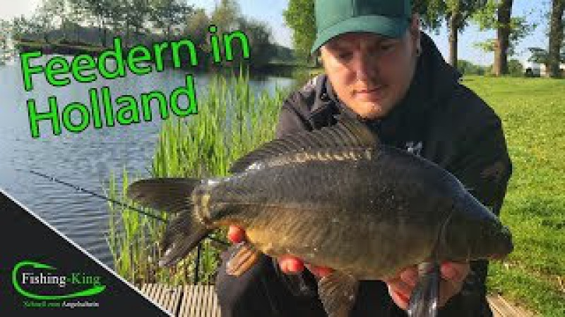 Method- und Pellet-Feedern auf Karpfen in Holland - Fishing-King.de