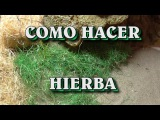 COMO HACER MUSGO, HIERBA, PAJA PARA EL BELEN - MOSS, GRASS, STRAW FOR BELEN