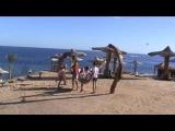 сборы,отдых в Шарм ель Шейхе. Мариупольские гимнастки