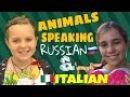 ANIMALS SPEAKING... | ЖИВОТНЫЕ ГОВОРЯТ...