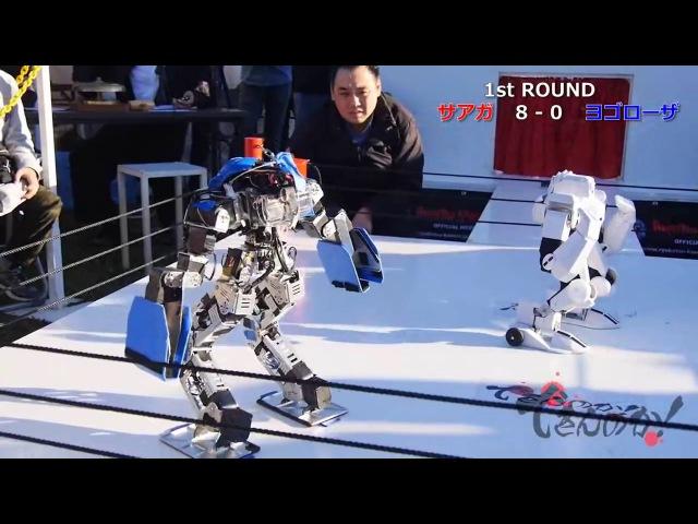 Лига роботов 2016. Бой чемпионов Saaga VS Yogoroza. Ай`эм Robot