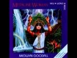 Medwyn Goodall- Sun Drumming