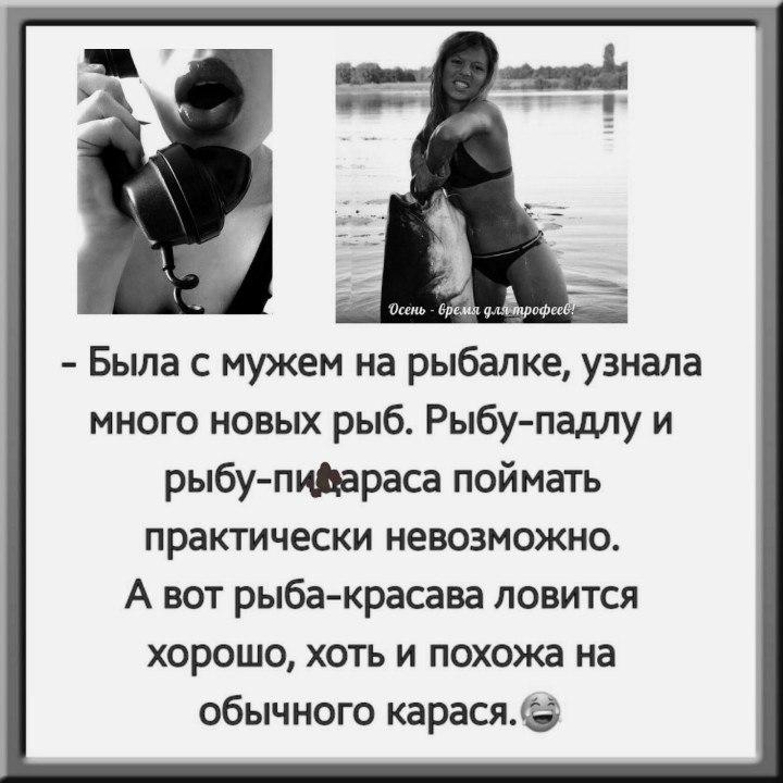https://pp.vk.me/c637618/v637618338/fe89/Cs-HWdVx_28.jpg