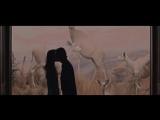 Spencer Reid Fanfic Trailer