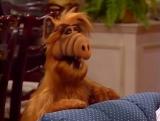 Alf Quote Season 1 Episode 14_Альф Дороти и Брайан