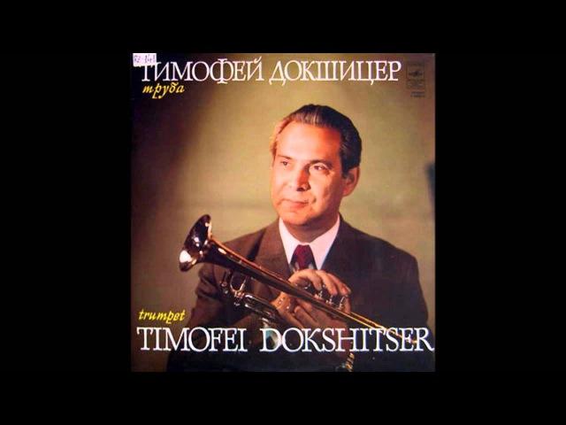 Timothy Dokshizer Albinoni Adagio in g minor. Тимофей Докшицер Адажио Альбинони - соль минор