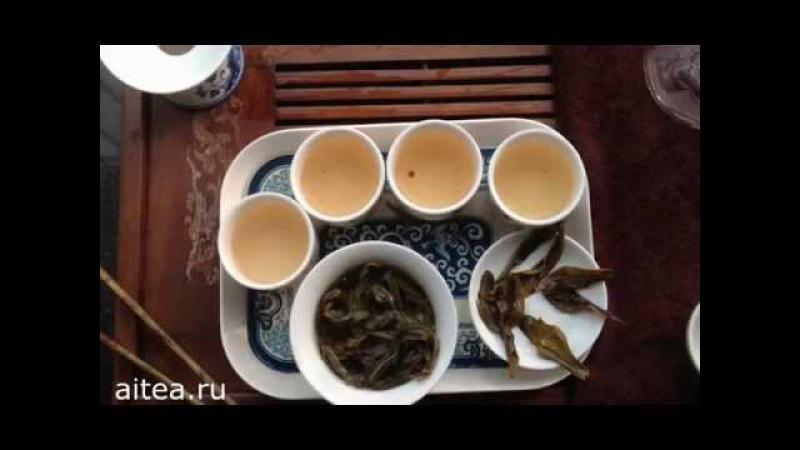 Гуандунский улун Фен Хуан Дан Цун (ФХДЦ). Классификация, обработка, заваривание.
