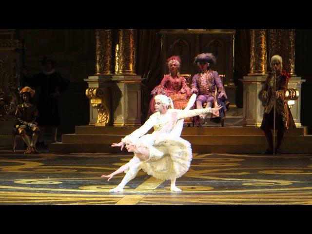 The Sleeping Beauty - BT 16.03.2013 - Maria Aleksandrova / Nikolai Tsiskaridze