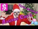 Плохой Санта украл все Новогодние подарки! 1 серия / Bad Santa stole all the Christmas gifts!