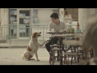 Тайская социальная реклама, взорвавшая интернет. Мир не без добрых людей. Творите добро!
