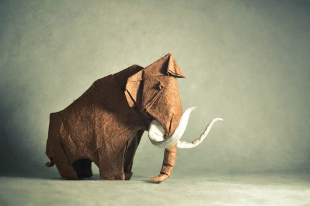 Мастер оригами: Гонсало Гарсия Кальво (Gonzalo Garcia Calvo).