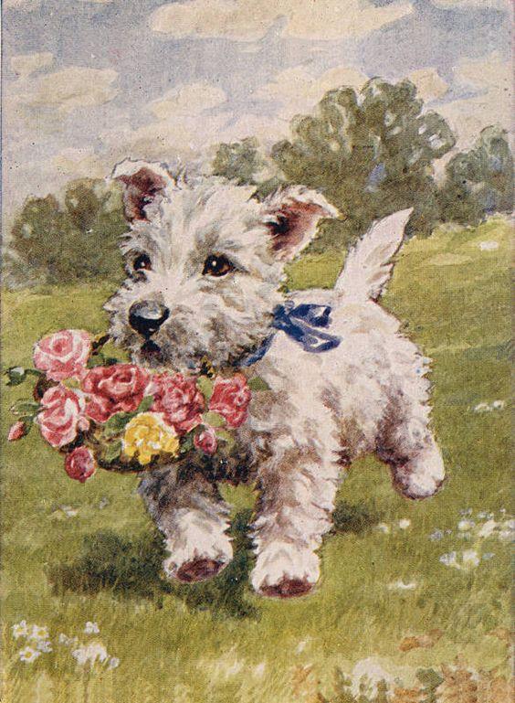 Открытки, открытки с собаками ретро
