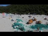 Plastic litters one of the worlds remotest islands - Henderson Island