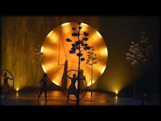 Жизнь в США, ВЛОГ Поход в Цирк 2017 #3 (Cirque de Soleil Luzia 2017)