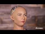 робот шкура софия