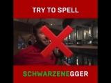1xСтавка: Очень сложно произнести фамилию Шварценеггера по буквам