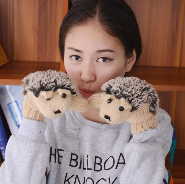 Милые перчатки  https://ru.aliexpress.com/store/product/Winter-Warm-Cartoon-hedgehog-design-gloves-womens-cute-knit-outdoor-cotton-Mittens-handschoenen-luvas-de-inverno/918960_32473163318.html?detailNewVersion=&categoryId=200000394