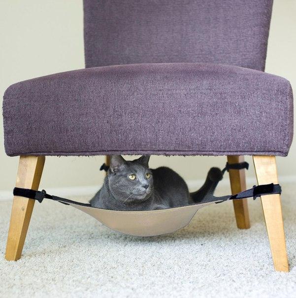 Крутое место для Кота  https://ru.aliexpress.com/store/product/Fully-Adjustable-Cat-Crib-Hammock-Under-Chair-Lounge-Bed-Dark-Grey-Beige/612807_32700653983.html?detailNewVersion=&categoryId=200003700
