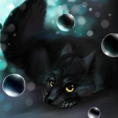 Black_Fox