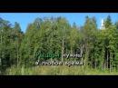 Караоке для детей - О рыцарях в наше время (Из к/ф Каникулы Петрова и Васечкина )