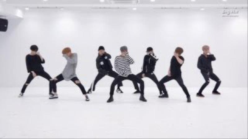 방탄소년단 '피 땀 눈물 (Blood Sweat Tears)' Dance Practice