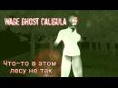 Лес Калигулы ► Wage Ghost Caligula