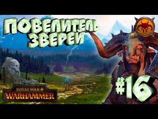 Total War: Warhammer - Зверолюды - ПРОХОЖДЕНИЕ 16 Новый повелитель зверей!