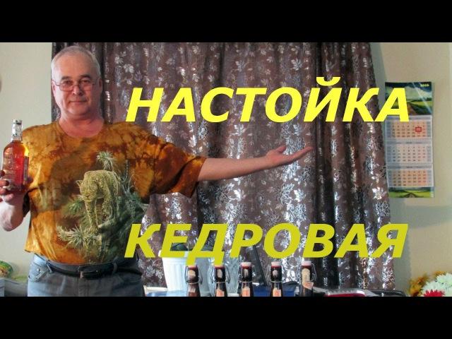 Кедровая настойка / Рецепты настоек / Самогон Саныч