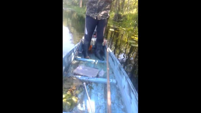 Невдалий момент на рибалці