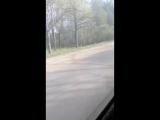Александр Козлов - Live